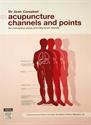 Εικόνα της Acupuncture channels and points